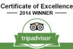 No.fifty6 is Awarded a TripAdvisor Certificate of Excellence