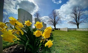 March 2021  - Spring Has Come to The Somme.