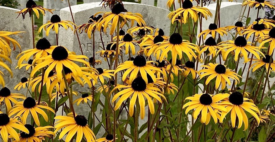 Caterpillar Valley Cemetery September 2021